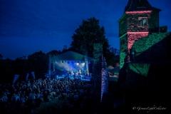 Frankenstein-Kulturfestival_Impressionen_c_Dieter-Keiner-3
