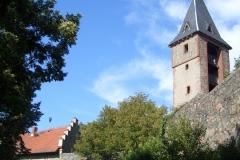 Frankenstein - Burg - Bild 52