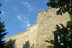 Frankenstein - Burg - Bild 38
