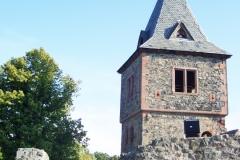 Frankenstein - Burg - Bild 3